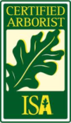 ISA-Logo-e1393435122547